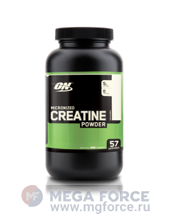 ON Creatine Powder (300 г.)