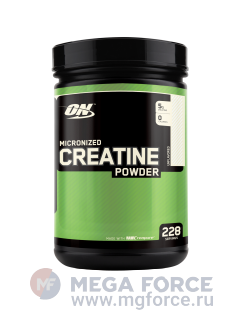 ON Creatine Powder (1200 г.)