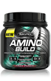 MuscleTech Amino Build (261 г.)